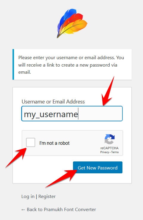 Enter your username to reset your password